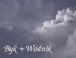 Byk i Wodnik