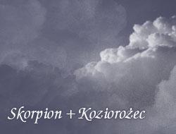Skorpion i Koziorożec
