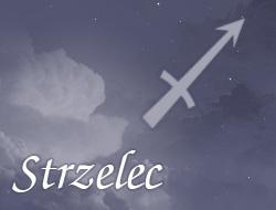 Horoskop zawodowy dla znaku Strzelec