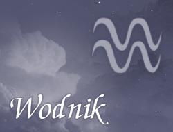 Horoskop zawodowy dla znaku Wodnik